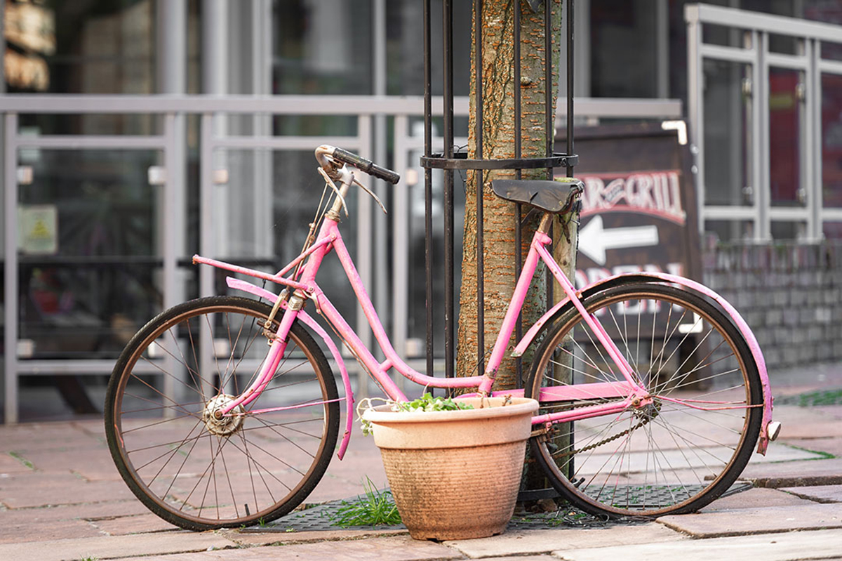Pink bicycle resting against a tree