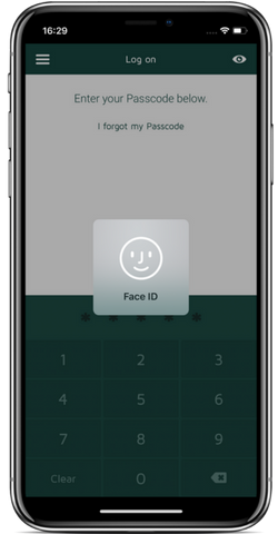 Log on using Face and Touch ID